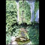 2005 08 20 Vence Gorges loup Greolieres Gourdon Caussols/S3700313