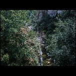 2005 08 20 Vence Gorges loup Greolieres Gourdon Caussols/S3700316