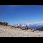 Indonesie Mount Ijen/100 1750