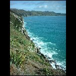 Nouvelle Zelande/19 New Zealand Catlins Nuggets Point IMAG3658
